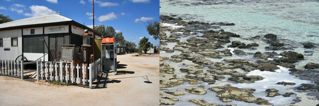 The telegraph station at Hamelin. The Stromatolites at the Hamelin Beach.